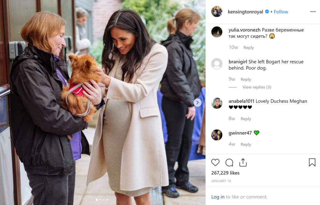 Charities Meghan Markle Supports- Mayhew