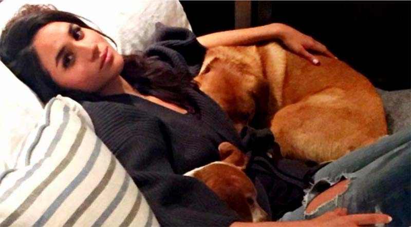 Meghan and Her Dogs- Dog Cuddling