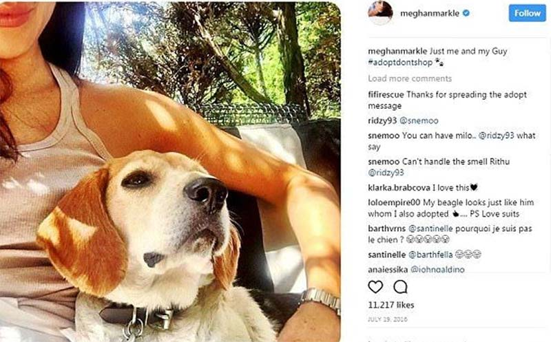 Meghan and Her Dogs- Guy Selfie