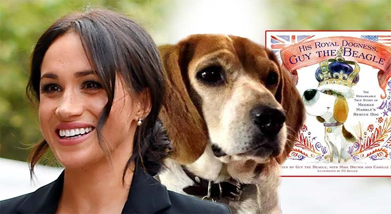 Meghan and Her Dogs- His Royal Dogness